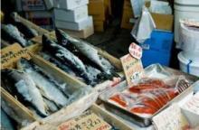 週4回は魚を食べよう! シミを防ぐ注目の美容成分「アルガトリウム」って?