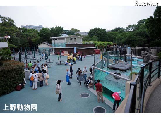 上野動物園など4園、障害をもつ子どもとその家族を閉園後に ...