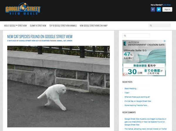 Googleストリートビューで「2本足の猫」が撮影される、ネットの猫好き騒然
