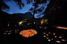 佐賀県・御船山楽園を竹灯籠でライトアップする「納涼~竹あかり~」開催