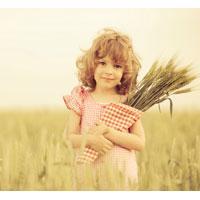 農薬禁止! 農業大国フランスの思い切った決断