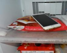 iPhoneを冷蔵庫に入れると電池の減りが遅くなる説 本当かデマか?