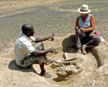 1万年前、集団で争いか=殺害された人骨多数-ケニア