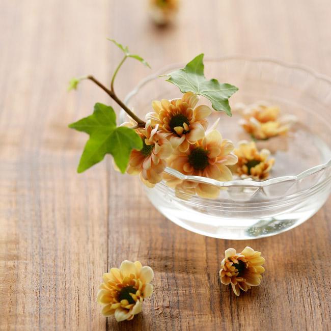 ポリフェノールや乳酸菌を意識して摂ろう!花粉に負けないカラダをつくる栄養素