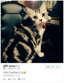 前田敦子が大興奮 愛猫ポッツちゃんが人気猫雑誌の表紙に決定