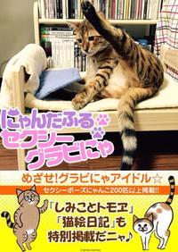 セクシーグラビにゃは好きかにゃん? 猫のセクシーポーズ写真集がeBookJapanで無料配信