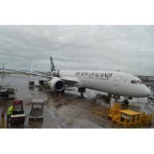ニュージーランド航空、関西=オークランド線を季節便運航 - 787-9を導入