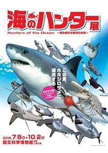 """巨大<span class=""""hlword1"""">ホホジロザメ</span>の全身標本を日本初公開 「海のハンター展」"""