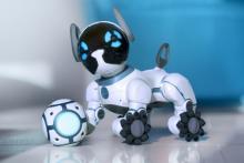 子犬とロボットが融合した新しい友達「Meet CHiP(ミート・チップ)」、飼い主との交流で賢く育つ!