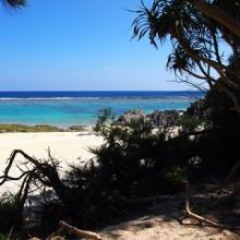 長寿と子宝の島は知られざる絶景の宝庫! 「徳之島」を丸ごと冒険してみた
