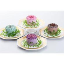 ケーキのようなサラダの新シリーズが全国配送可能に