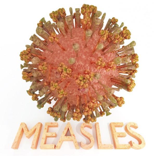 はしかの感染が拡大とか・・。感染症からどうやって身を守るか、考えてみよう!