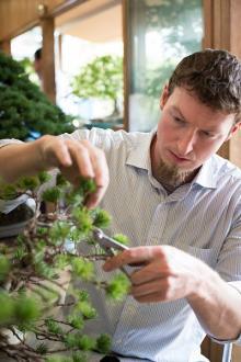 盆栽修行に励む米人男性 きっかけは映画『ベスト・キッド』