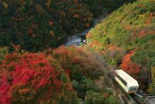 日本の絶景第1位!日本三大秘境の「徳島県・大歩危祖谷温泉」に今行くべき4つの理由