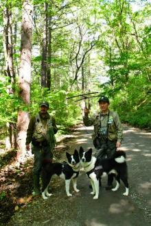 クマを殺さずに人間と共存させるために働く軽井沢の姉弟犬