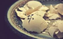 ○割の人が元夫から養育費をもらっていない!? 離婚で後悔しないためには?