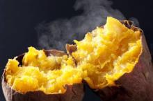 全国の焼き芋が大集結! アウトドアなのにホッカホカになれるイベント開催
