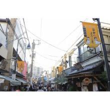 猫と歩む街! ネコが多そうな街ランキング首都圏・近畿圏・中部圏の1位は?