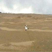 カントリー山木梨沙 道重の復活写真に「心臓がもたない」