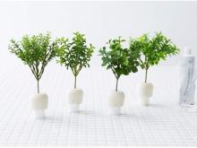 観葉植物!?いいえ、新発想のお掃除ブラシだよ