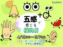 【GW2017】板橋・熱帯環境植物館、五感で感じる体験型展示4/18-5/7