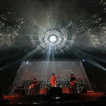 THE COLLECTORS、キャリア初の武道館単独公演が映像化