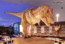 親子で本物を体験「恐竜博士体験ツアーin恐竜王国福井」販売開始
