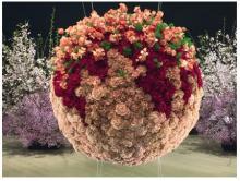 假屋崎省吾 人生初、生け花で巨大たこ焼き制作「すごいアート」