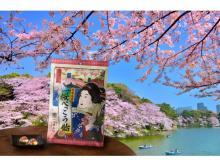 千代田区さくらまつりの新土産!桜のべっこう飴が美しい