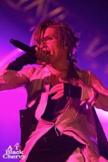 Acid Black Cherryの10年――2014年を振り返る