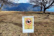 花見シーズンの天空の城竹田城跡にドローン問題が浮上