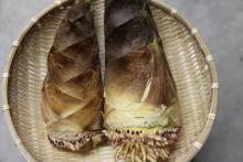 春の味覚「たけのこ」で作る洋風おかずレシピ