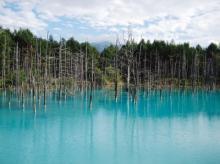 一度は撮りたい!自然が生むパワースポット「青い池」