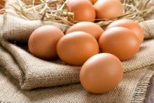 2017年のラッキーフード「鶏肉」&春の食材「卵」が金運を招く♪