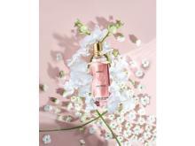 花々の香りで幸せ気分!ロクシタンのオーキデシリーズ