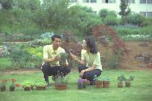 NHK『趣味の園芸』50周年記念番組、5・7生放送