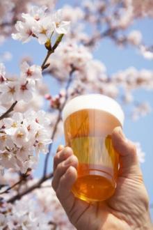 花見の名所やビーチで酒禁止 自販機も20年で9割減