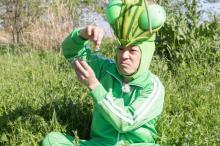 香川照之、再びカマキリ先生に 第2弾5・5放送 モンシロチョウのすごさ体感