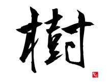 【漢字トリビア】「樹」の成り立ち物語