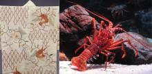 水族館×博物館!京都で生き物と文化のコラボ企画
