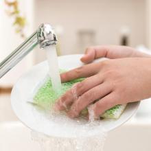 食器を洗うスポンジ、半年放置してもきれいなら使い続けていい?
