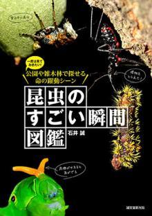 昆虫たちの「すごい瞬間」ばかりを集めた図鑑が登場