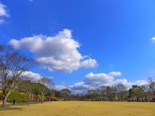 初開催の「九州 蚤の市」、古道具、クラフト、フードなど約170店が九州内外から集結