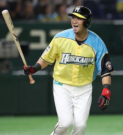 「プロ野球日本ハム無料写真」の画像検索結果