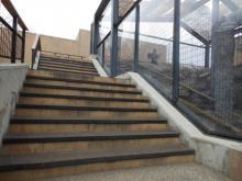 猛獣をいろんな角度で観察できる、旭山動物園の「もうじゅう館」を楽しむコツ