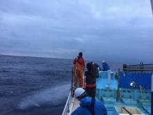 小倉優子 鰹の一本釣りに挑戦、今は「人生の頑張りどころ」