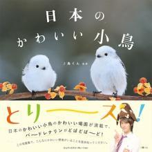 バードウォッチングが楽しくなる!「日本のかわいい小鳥」