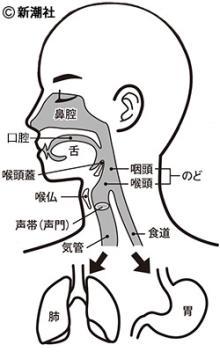 中村勘三郎、山城新伍も… 増加する「誤嚥性肺炎」の原因とは