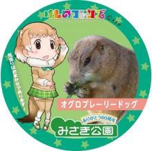 """大阪の動物園「みさき公園」にフレンズたちがやってくる!「<span class=""""hlword1"""">けものフレンズ</span>」コラボ企画が7月からスタート"""