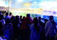 鴨川シーワールドの期間限定夜の水族館探検、7月1日に予約開始!